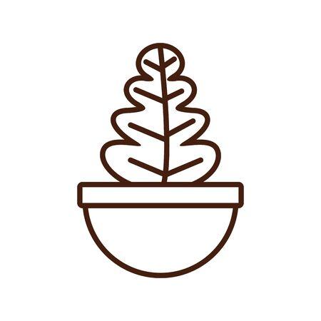 houseplant in ceramic pot icon vector illustration design