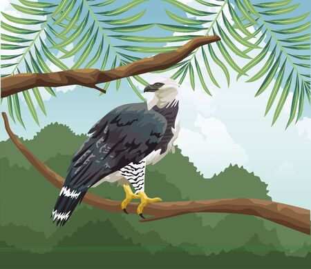eagle on branch tropical fauna and flora landscape vector illustration Ilustração