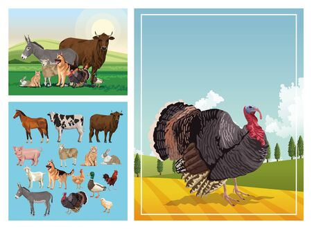 group of animals farm in the camp vector illustration design Illustration