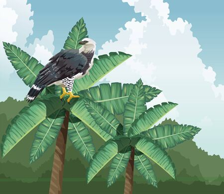 eagle on palm tropical fauna and flora landscape vector illustration