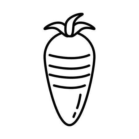 fresh carrot vegetable healthy food icon vector illustration design