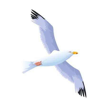 Icono de pájaro gaviota sobre fondo blanco, diseño colorido, ilustración vectorial