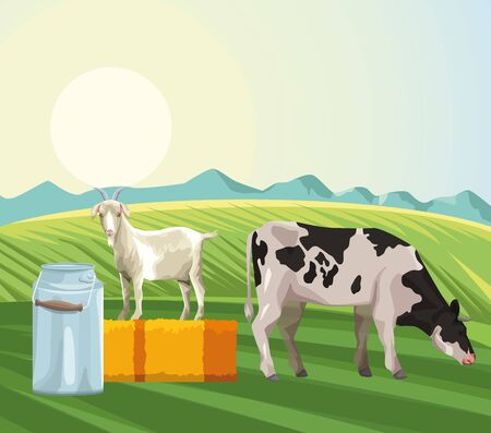 farming cow eating grass goat canister milk and hay field vector illustration Illustration