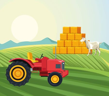 farming goat walking in the field tractor and hay bales vector illustration  イラスト・ベクター素材