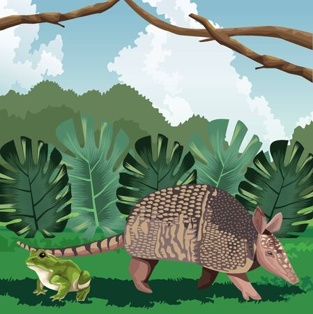 armadillo and frog foliage tropical fauna and flora landscape vector illustration