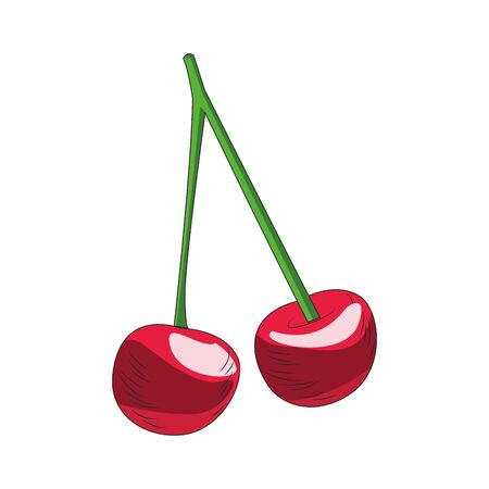cherries fruit icon over white background, colorful design, vector illustration