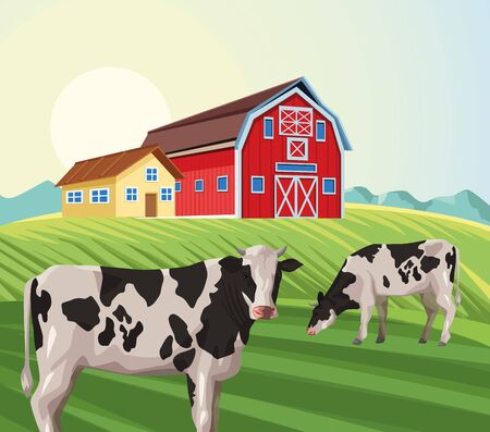farming house barn eating cow in the field vector illustration