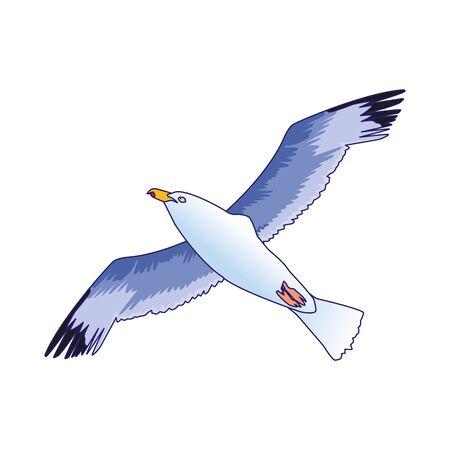 gull bird icon over white background, vector illustration