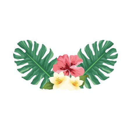 tropical leaves and flowers over white background colorful design, vector illustration