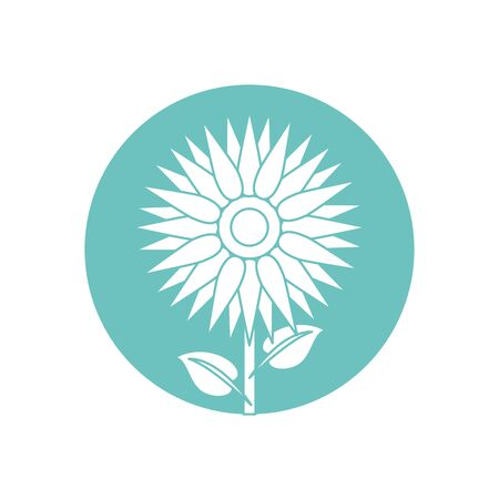 beautiful sunflower garden isolated icon vector illustration design