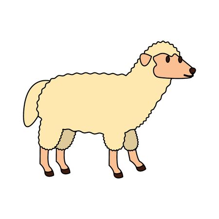 farm cute mammal animal sheep cartoon vector illustration graphic design