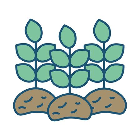 house plant cultivating isolated icon vector illustration design