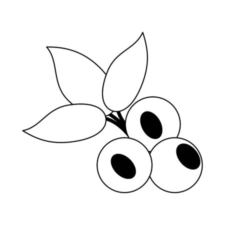 blueberries fruit fresh food isolated vector illustration graphic design  イラスト・ベクター素材