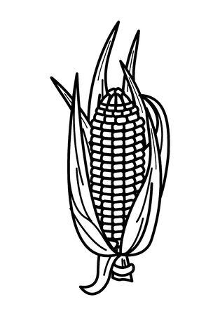 corn cob vegetable thanksgiving icon vector illustration design