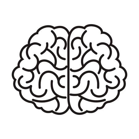 brain organ human isolated icon vector illustration design