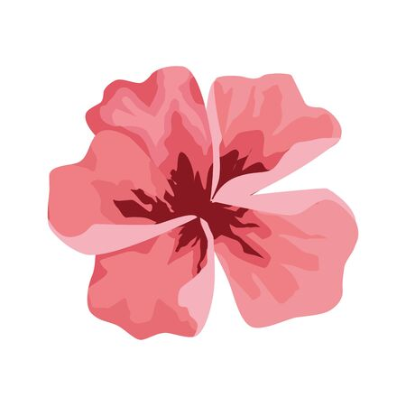pink tropical flower icon over white background, vector illustration Foto de archivo - 143300252