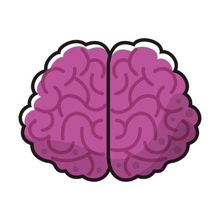 brain organ human isolated icon vector illustration design Vettoriali