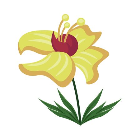 exotic and tropical flower nature icon vector illustration design