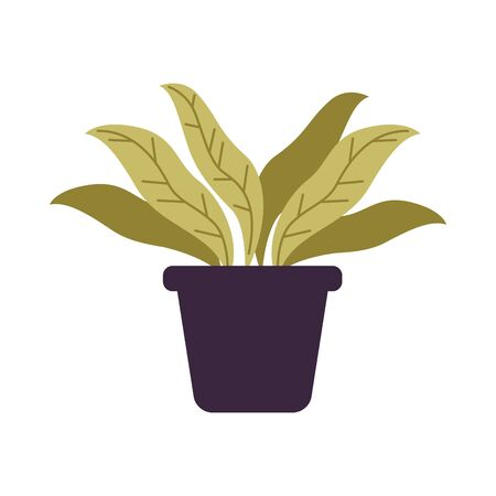 houseplant in pot isolated icon vector illustration design