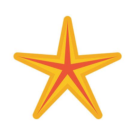 starfish sea animal summer icon vector illustration design