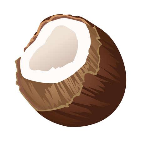 fresh coconut fruit summer icon vector illustration design