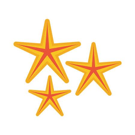 starfishes sea animals summer icons vector illustration design