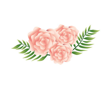 beautiful pink flowers and leafs decorative icon vector illustration design Иллюстрация