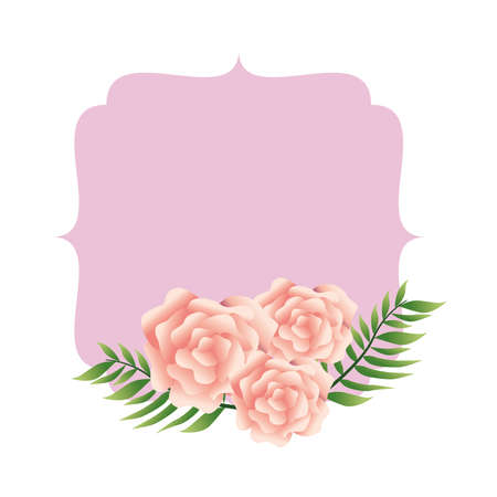 beautiful pink flowers and leafs decorative frame vector illustration design