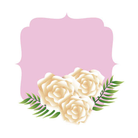 beautiful cream flowers and leafs frame vector illustration design