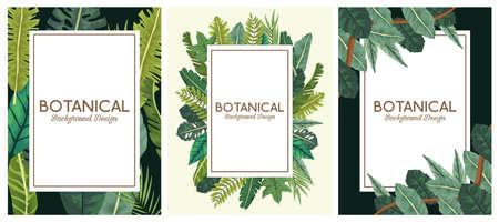 tropical leafs in frames and letterings botanical backgrounds designs vector illustration design