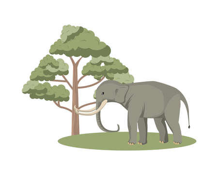 wild elephant animal with tree nature icon vector illustration design