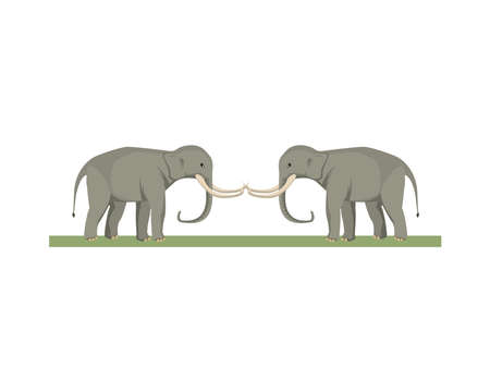 wild elephant animal nature icon vector illustration design 矢量图像