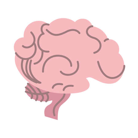 brain human organ isolated icon vector illustration design 向量圖像