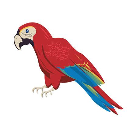 wild exotic macaw bird animal icon vector illustration design Stock Illustratie