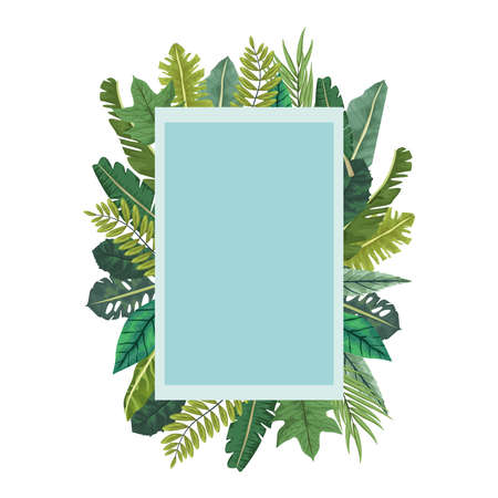 tropical leafs palm nature square frame vector illustration design
