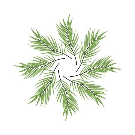 tropical leafs palm nature circular decoration vector illustration design