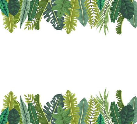 tropical leafs palm nature frame vector illustration design  イラスト・ベクター素材