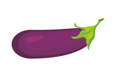 egg plant healthy vegetable isolated style icon vector illustration design