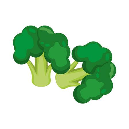 fresh broccoli healthy vegetable icon vector illustration design Ilustracja