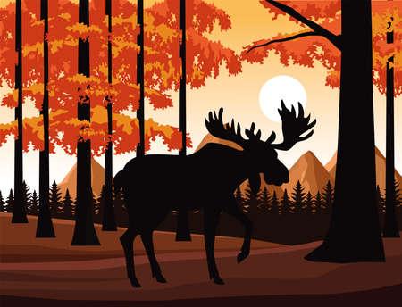 wild moose animal in the field scene vector illustration design