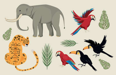 wild animals and leafs group scene vector illustration design