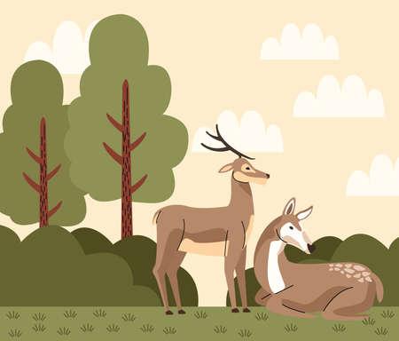 wild reindeer animals in the camp scene vector illustration design Illustration