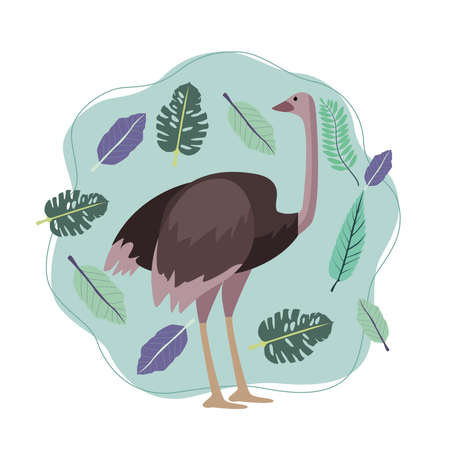 wild ostrich animal with leafs nature scene vector illustration design