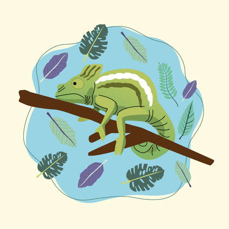 wild chameleon animal nature scene vector illustration design Vectores