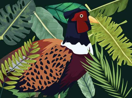 wild pheasant bird farm in the jundle scene vector illustration design 向量圖像