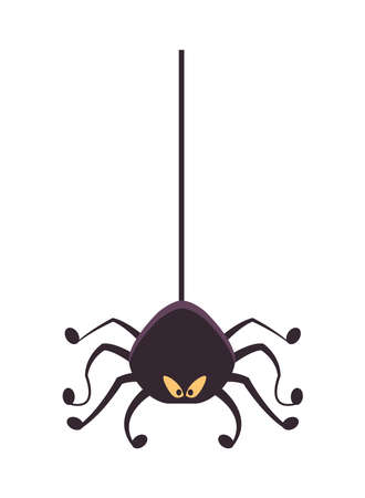 halloween spider hanging isolated icon vector illustration design