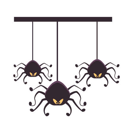 halloween spiders hanging isolated icons vector illustration design
