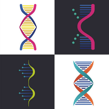 four dna molecules structures set icons vector illustration design