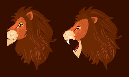 heads of lions kings profiles colorful icons vector illustration design