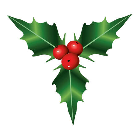 happy merry christmas berries and leafs decoration vector illustration design